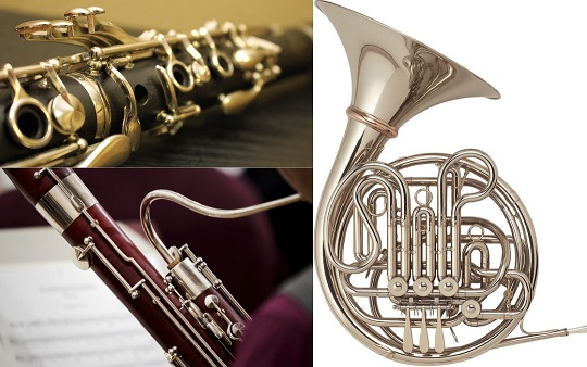 Excerpt Workshop Clarinet, Bassoon, French Horn